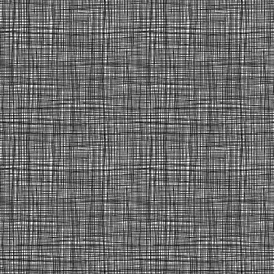 1525/WX NEW Linea Zebra