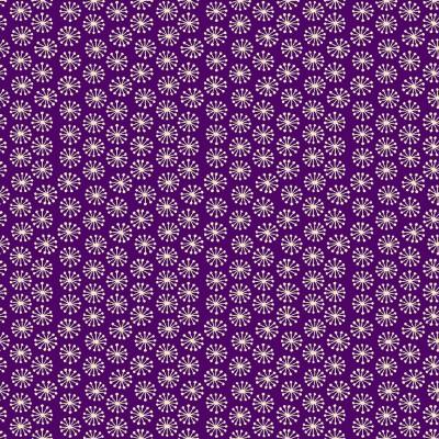 2393/L Pop