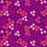 2394_P_Star