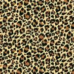 2403_V_leopard