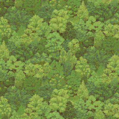 1353/G4 trees