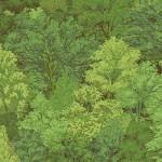 1353_G4_Trees