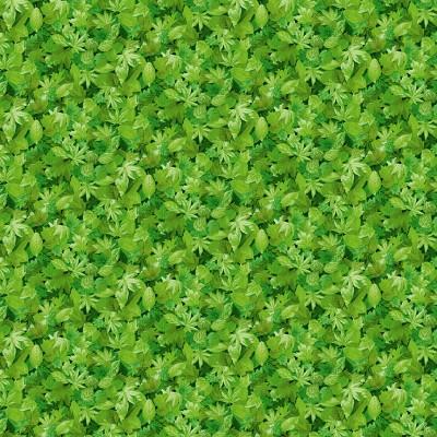 1354/G3 Leaves
