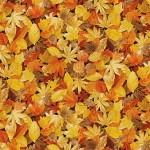 1354_N2_leaves