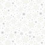 2364_W1_Snowflake