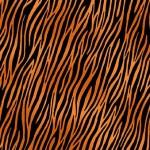 2401_V_zebra