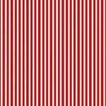 2437_R_Simple Stripe