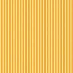 2437_Y_Simple Stripe